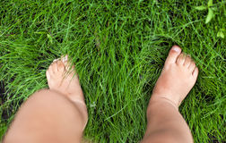 Small cute baby feet on the grass. Stock Photo
