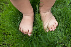 Small cute baby feet. Royalty Free Stock Photo