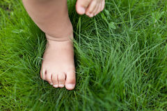 Small cute baby feet. Royalty Free Stock Photography