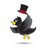 Small Cute Bird. Small Cute Black Bird with Hat Stock Photography