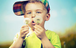 Small cute boy playing blow-balls Royalty Free Stock Images