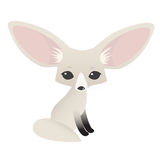 Small cute fennec with big ears Royalty Free Stock Images