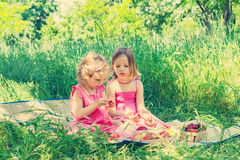 Small cute funny girls (sisters) at the picnic. Stock Image