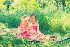 Small cute funny girls (sisters) at the picnic. Royalty Free Stock Image
