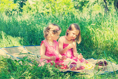 Small cute funny girls (sisters) at the picnic. Stock Photos