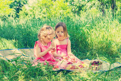 Small cute funny girls (sisters) at the picnic. Royalty Free Stock Photography