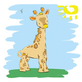 Small cute giraffe Stock Photography