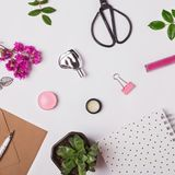 Small cute items, flowers and plants. Royalty Free Stock Photos