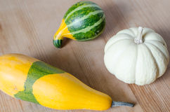 Small cute pumpkins Royalty Free Stock Image