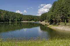 Small dam or reservoir in beautiful mountain Plana. Alino, Bulgaria Royalty Free Stock Images
