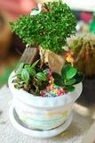 Small decoration in the pot Royalty Free Stock Photos