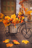 Small decorative bicycle with basket filled with yellow autumn l. Eaves and grapes berries on the wooden floor Stock Photos