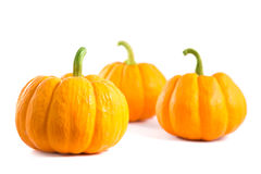 Small decorative orange pumpkins Royalty Free Stock Images