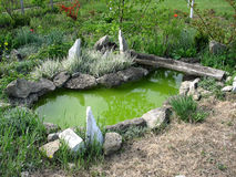 Small decorative pond Royalty Free Stock Photography