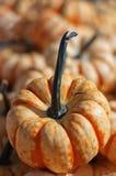 Small decorative pumpkin. Small orange and white decorative pumpkin Stock Image