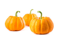 Small decorative pumpkins Stock Photo