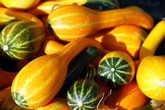 Small decorative pumpkins Royalty Free Stock Image