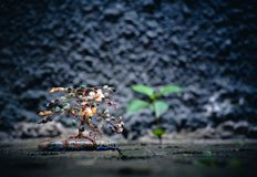 A small decorative tree with a real plant blurred in the back stock image