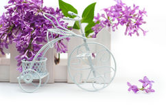 Small decorative white bicycle on a background of purple flowers lilac Stock Photo