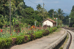 Small deserted railway station with a flowerbed. Stock Photo