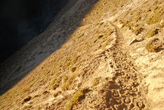 Small dirt road with animal tracks in the Andes Royalty Free Stock Image