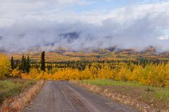 Small dirt road golden taiga fogs Yukon Canada Stock Images