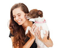 Small Dog Kissing Beautiful Young Woman Stock Images