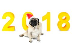 A dog of pug breed in santa hat sits on the background of a New Year`s yellow inscription 2018. Isolated. A small dog of pug breed in a red santa hat sits on Stock Images