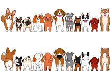 Small Dogs border set. Small Dogs breed border set, from front view and rear view royalty free illustration