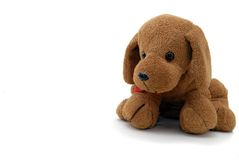 Small Doogy Toy With Flower Stock Photography