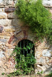 Small door almost hidden by the vegetation Royalty Free Stock Photography