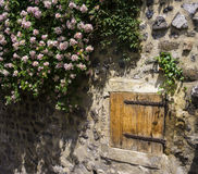 Small door in a stone wall. And flowers Stock Images