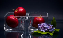 Small double glass vase and three apples on gray Royalty Free Stock Photography