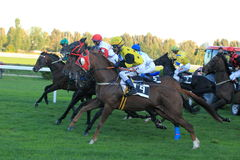 Small draw horse racing in Prague Stock Photo