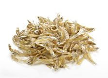 Small dried fish on white background. Small dried fish on white background royalty free stock photography