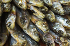 Small dried fishes on wooden surface. Stock Images