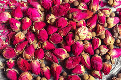 Small dried tea rose buds Stock Image