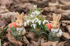 Easter bunnies in spring leaves next to snowdrops royalty free stock photography