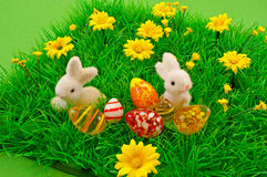 Small easter Bunny in grass Royalty Free Stock Photo