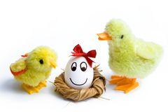 Small easter chick Stock Photo