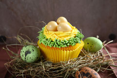 Small easter cupcake with eggs Stock Photography
