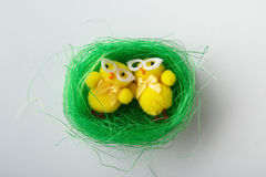Small easter nest on white Stock Photos