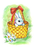 Small easter rabbit. Cute small rabbit sitting in the backet Royalty Free Stock Images