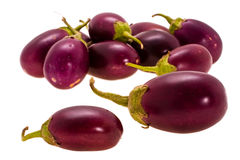 Small eggplant Royalty Free Stock Image