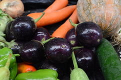 Small eggplants and carrots Royalty Free Stock Image