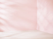 Small empty room in pink tone Royalty Free Stock Image