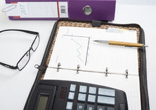 Small entrepreneur is checking graph investment and profit using pen Royalty Free Stock Photo