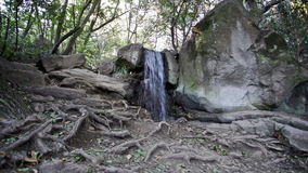 Small falls flow on stones stock video