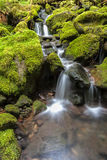 Small falls through moss covered rocks. Royalty Free Stock Photography