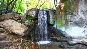 Small falls among stones stock footage